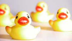 4 yellow plastic ducks with red beaks in a row